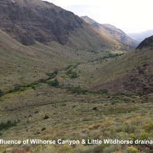 Confluence of Wildhorse Canyon & Little Wildhorse drainage