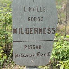 Linville Gorge Wilderness, NC