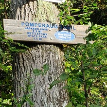 Pomperaug Trail, photo by Kate Gelineau