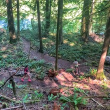 Rachel Drake, Jessie Vickers - McKenzie River Trail (OR)