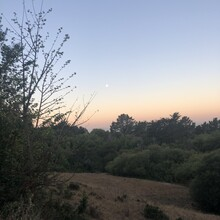 Devon Yanko - East Bay Skyline National Recreation Trail (CA)